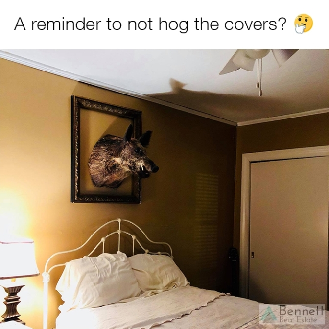 hog-covers-watermark