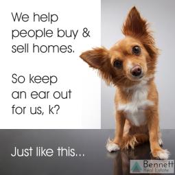 animal-help-buy-sell-team-watermark